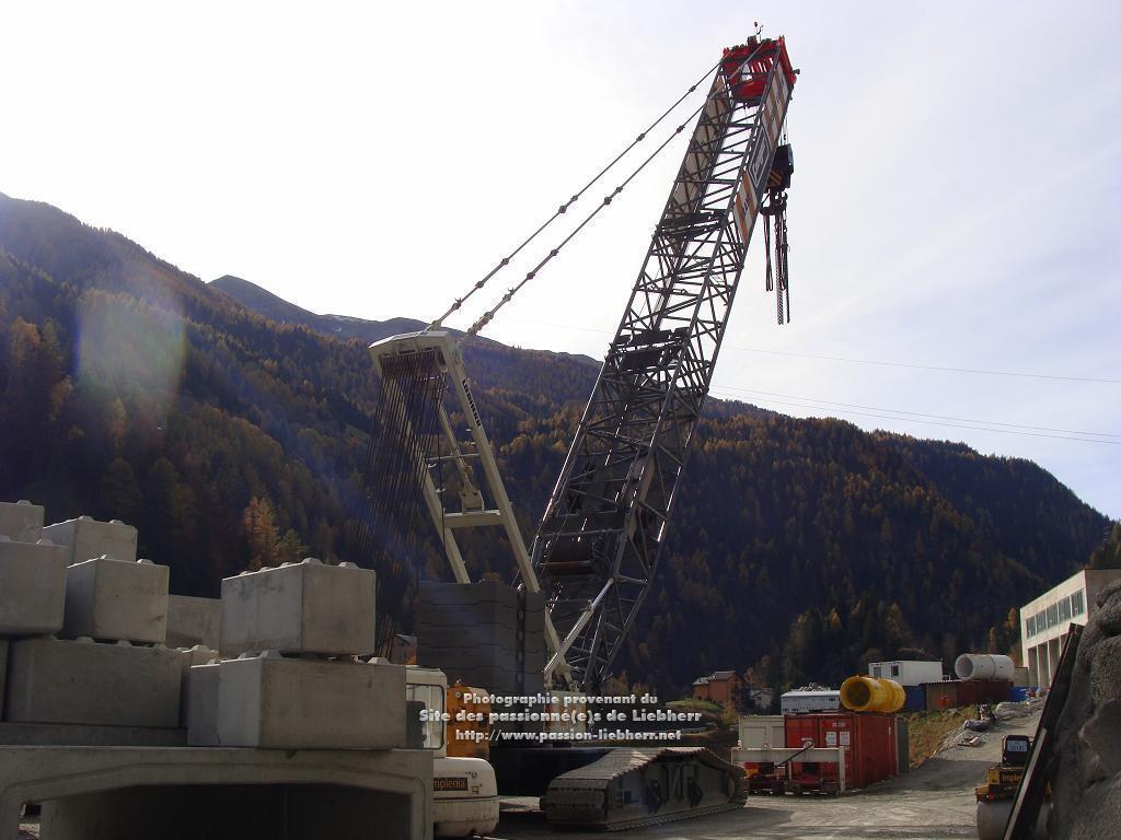 Les grues de FANGER (Suisse) 20091031dsc03134-