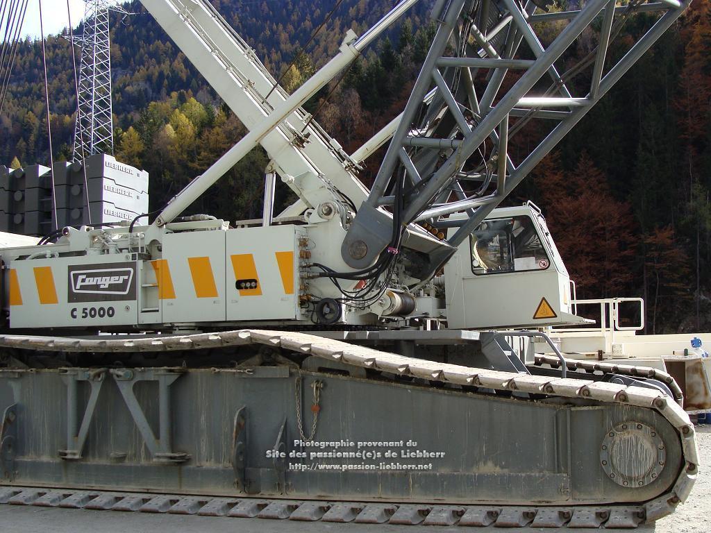 Les grues de FANGER (Suisse) 20091031dsc03138-