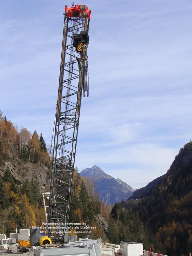 Les grues de FANGER (Suisse) 20091031dsc03153-