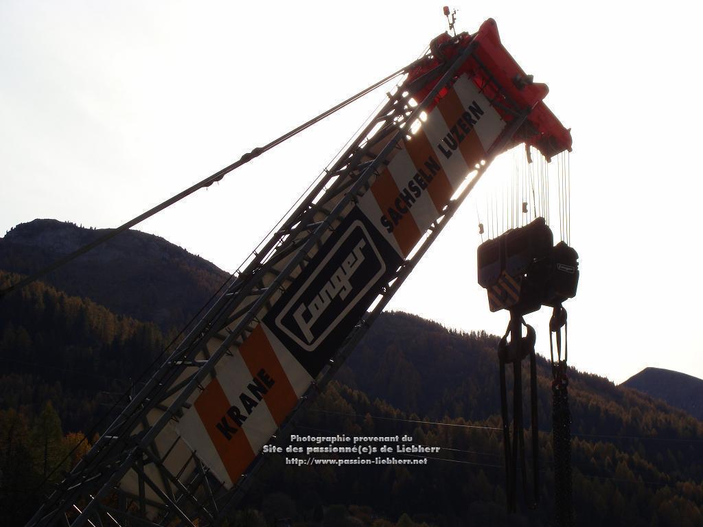 Les grues de FANGER (Suisse) 20091031dsc03165-