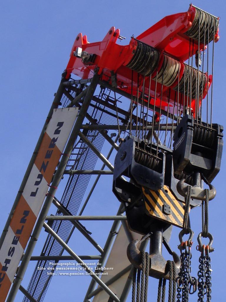 Les grues de FANGER (Suisse) 20091031dsc03186--