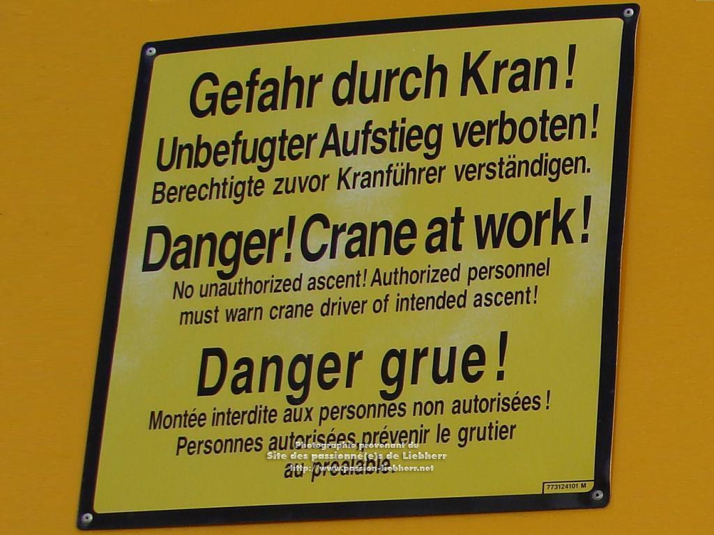 Grue mobile de construction Liebherr MK 100 20091031dsc03223-g