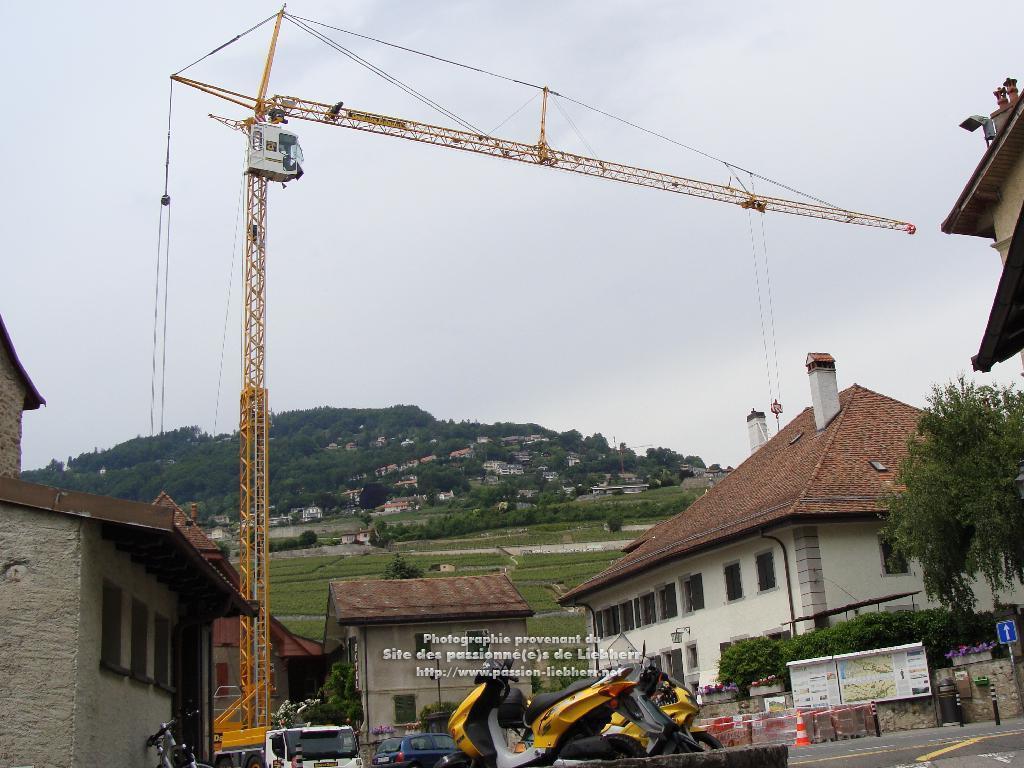 Grue mobile de construction Liebherr MK 88 20100608dsc04796-